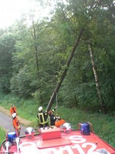 TH_klein allgemein Baum droht auf Fahrbahn zu stürzen